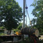 Massive Cottonwood Removal 14